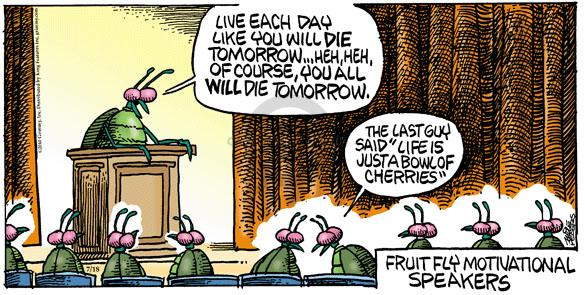 Cartoonist Mike Peters  Mother Goose and Grimm 2010-07-18 fruit fly