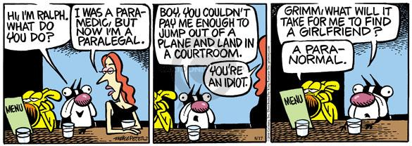 Comic Strip Mike Peters  Mother Goose and Grimm 2010-08-17 paramedic