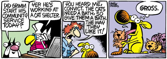 Comic Strip Mike Peters  Mother Goose and Grimm 2010-10-19 grooming