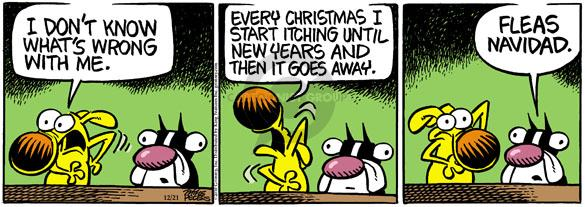 Comic Strip Mike Peters  Mother Goose and Grimm 2010-12-21 New Year