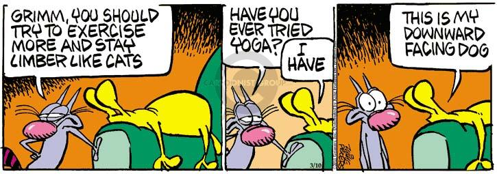 Comic Strip Mike Peters  Mother Goose and Grimm 2011-03-10 dog and cat
