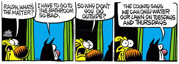 Comic Strip Mike Peters  Mother Goose and Grimm 2011-07-22 laws