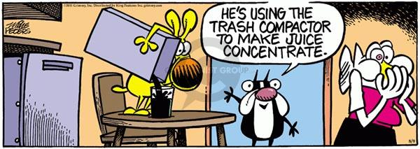 Comic Strip Mike Peters  Mother Goose and Grimm 2011-08-09 kitchen