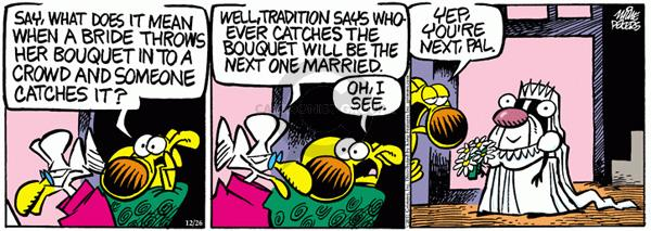Comic Strip Mike Peters  Mother Goose and Grimm 2011-12-26 wedding tradition