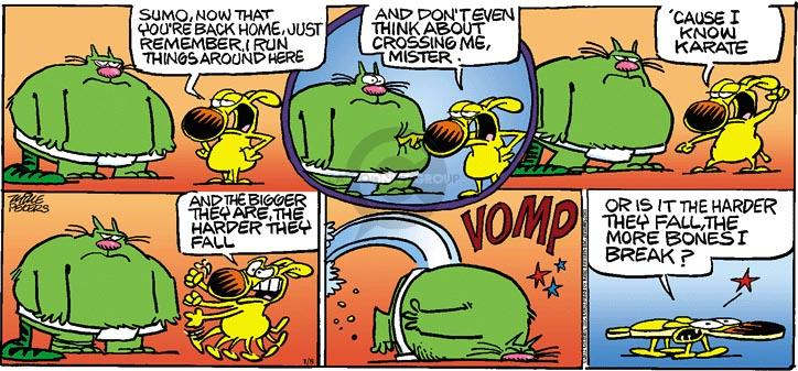 Cartoonist Mike Peters  Mother Goose and Grimm 2012-01-08 karate