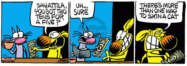Comic Strip Mike Peters  Mother Goose and Grimm 2012-01-12 math