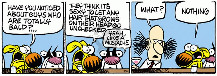 Comic Strip Mike Peters  Mother Goose and Grimm 2012-03-22 grooming