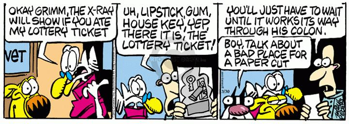 Comic Strip Mike Peters  Mother Goose and Grimm 2012-03-30 house