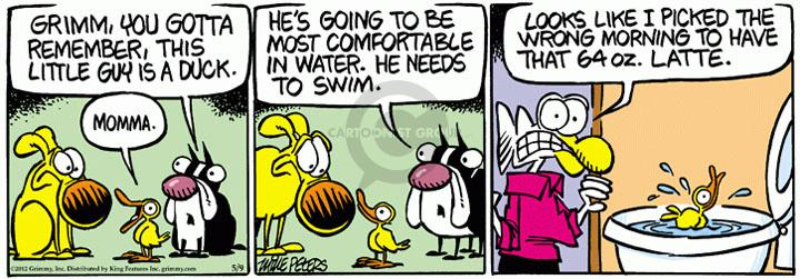 Comic Strip Mike Peters  Mother Goose and Grimm 2012-05-09 in water
