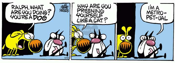 Comic Strip Mike Peters  Mother Goose and Grimm 2012-05-14 dog and cat