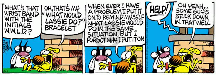 Comic Strip Mike Peters  Mother Goose and Grimm 2012-06-01 assistance dog