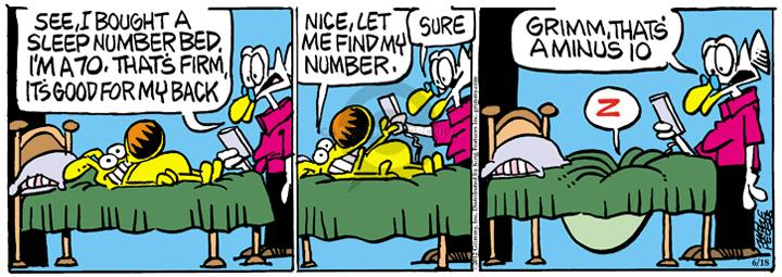 Comic Strip Mike Peters  Mother Goose and Grimm 2012-06-18 asleep