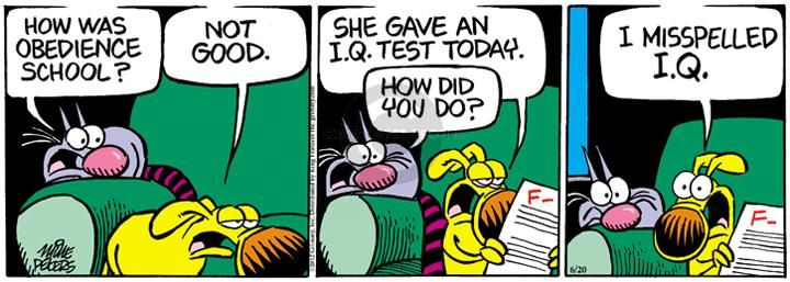Comic Strip Mike Peters  Mother Goose and Grimm 2012-06-20 school exam