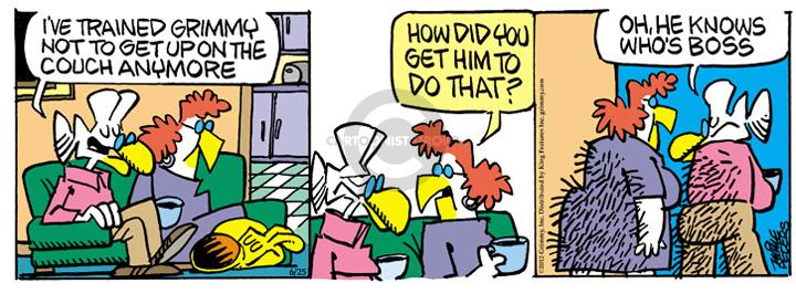 Cartoonist Mike Peters  Mother Goose and Grimm 2012-06-25 deception