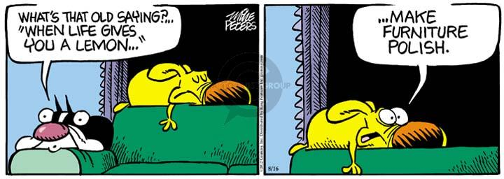 Comic Strip Mike Peters  Mother Goose and Grimm 2012-08-16 housecleaning