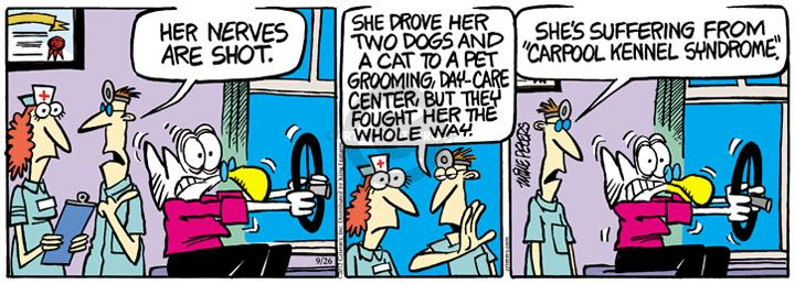 Comic Strip Mike Peters  Mother Goose and Grimm 2012-09-26 grooming