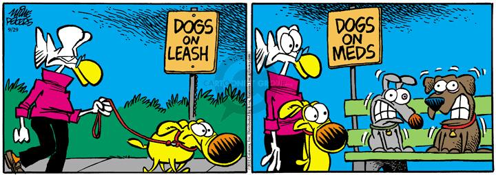 Comic Strip Mike Peters  Mother Goose and Grimm 2012-09-29 effect