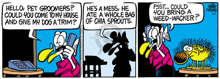 Comic Strip Mike Peters  Mother Goose and Grimm 2012-12-07 grooming