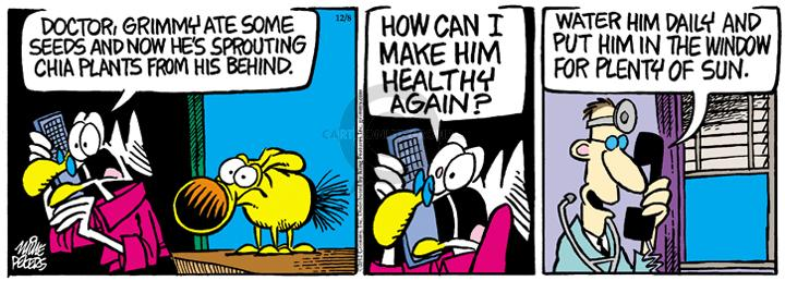 Comic Strip Mike Peters  Mother Goose and Grimm 2012-12-08 plant