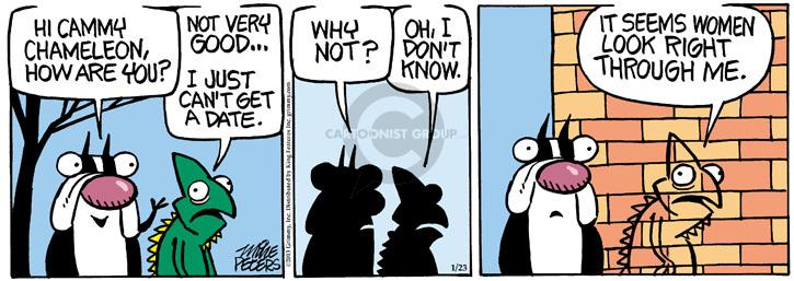 Comic Strip Mike Peters  Mother Goose and Grimm 2013-01-23 get