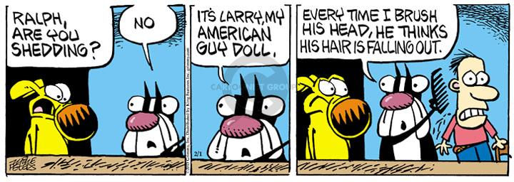 Cartoonist Mike Peters  Mother Goose and Grimm 2013-02-01 hair loss