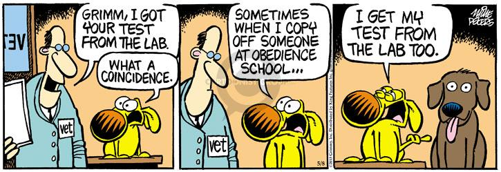 Comic Strip Mike Peters  Mother Goose and Grimm 2013-05-08 sometimes
