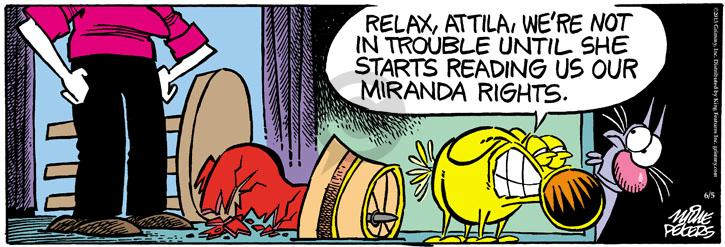 Comic Strip Mike Peters  Mother Goose and Grimm 2013-06-05 trouble