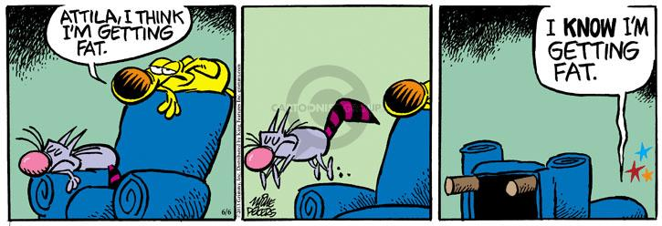 Comic Strip Mike Peters  Mother Goose and Grimm 2013-06-06 balance