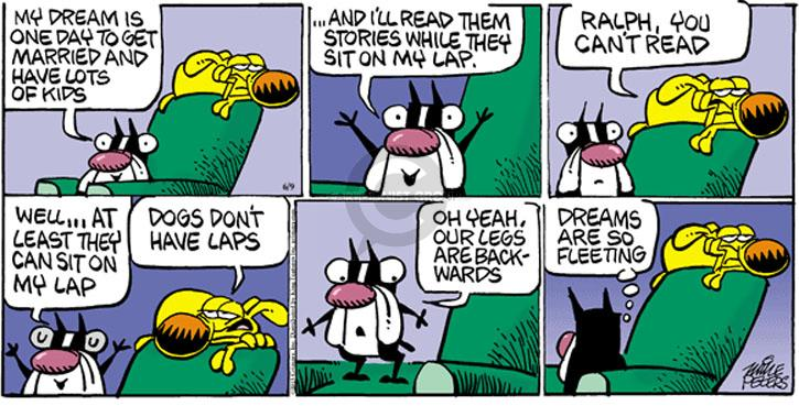 Comic Strip Mike Peters  Mother Goose and Grimm 2013-06-09 lap dog