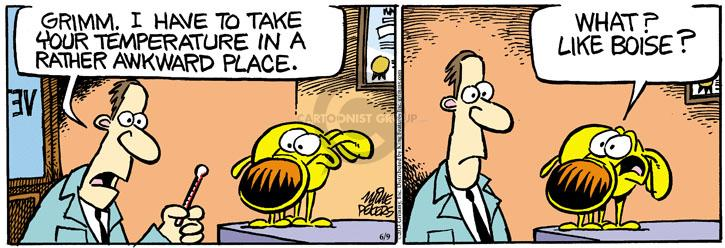 Comic Strip Mike Peters  Mother Goose and Grimm 2013-06-24 location