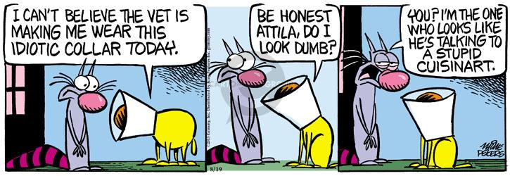 Comic Strip Mike Peters  Mother Goose and Grimm 2013-08-19 idiot
