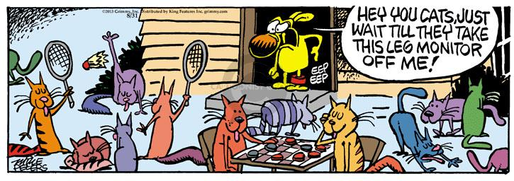 Comic Strip Mike Peters  Mother Goose and Grimm 2013-08-31 house