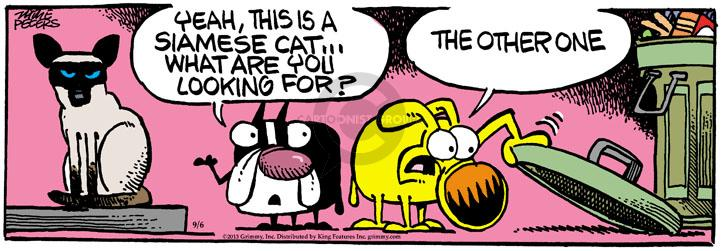 Comic Strip Mike Peters  Mother Goose and Grimm 2013-09-06 cat lady
