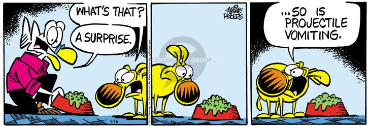 Comic Strip Mike Peters  Mother Goose and Grimm 2013-09-16 gross