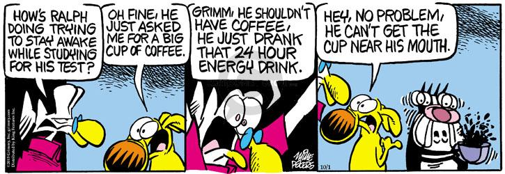 Comic Strip Mike Peters  Mother Goose and Grimm 2013-10-01 awake