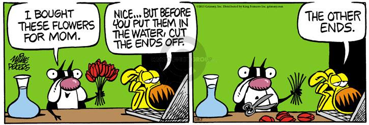 Comic Strip Mike Peters  Mother Goose and Grimm 2013-10-03 flower bouquet