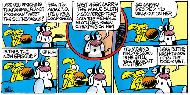 Comic Strip Mike Peters  Mother Goose and Grimm 2013-12-15 drama