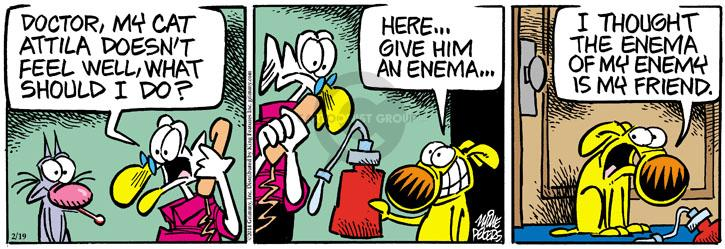 Comic Strip Mike Peters  Mother Goose and Grimm 2014-02-19 sick cat