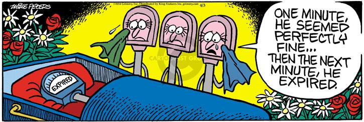 Comic Strip Mike Peters  Mother Goose and Grimm 2014-04-03 funeral