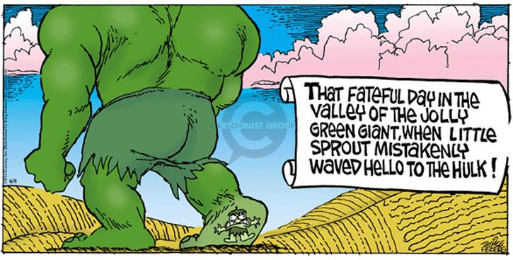 Comic Strip Mike Peters  Mother Goose and Grimm 2014-06-08 hello