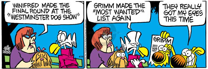 Comic Strip Mike Peters  Mother Goose and Grimm 2014-06-10 eye