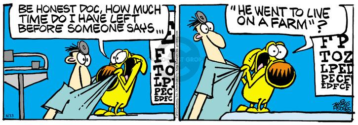 Comic Strip Mike Peters  Mother Goose and Grimm 2014-06-13 health