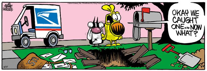 Cartoonist Mike Peters  Mother Goose and Grimm 2014-06-17 carrier