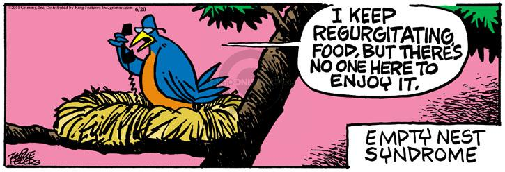 Comic Strip Mike Peters  Mother Goose and Grimm 2014-06-20 empty