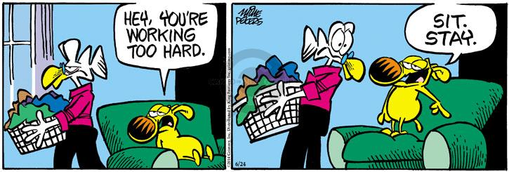 Comic Strip Mike Peters  Mother Goose and Grimm 2014-06-24 housekeeping