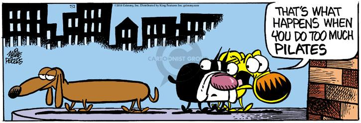 Cartoonist Mike Peters  Mother Goose and Grimm 2014-07-02 exercise