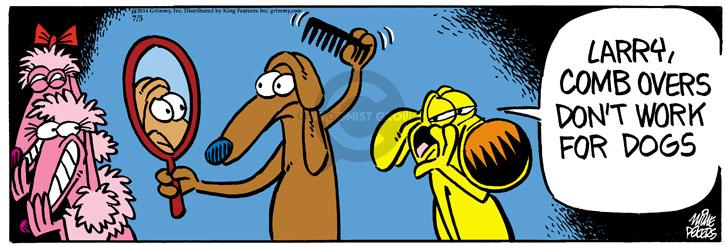 Comic Strip Mike Peters  Mother Goose and Grimm 2014-07-05 hairstyle