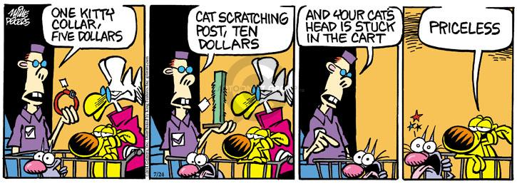 Comic Strip Mike Peters  Mother Goose and Grimm 2014-07-24 cashier