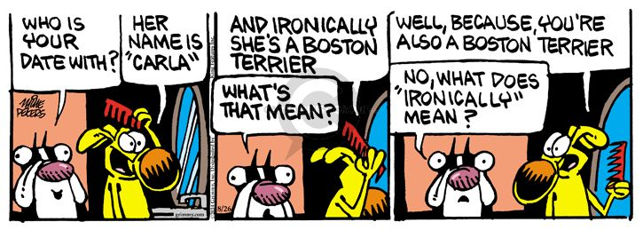 Comic Strip Mike Peters  Mother Goose and Grimm 2014-08-26 Boston Terrier