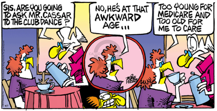 Comic Strip Mike Peters  Mother Goose and Grimm 2014-09-07 club